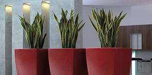excl pflanzgef e vasen in hannover u hamburg ludwig. Black Bedroom Furniture Sets. Home Design Ideas